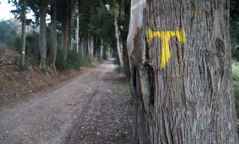 sentieri-francescani_a