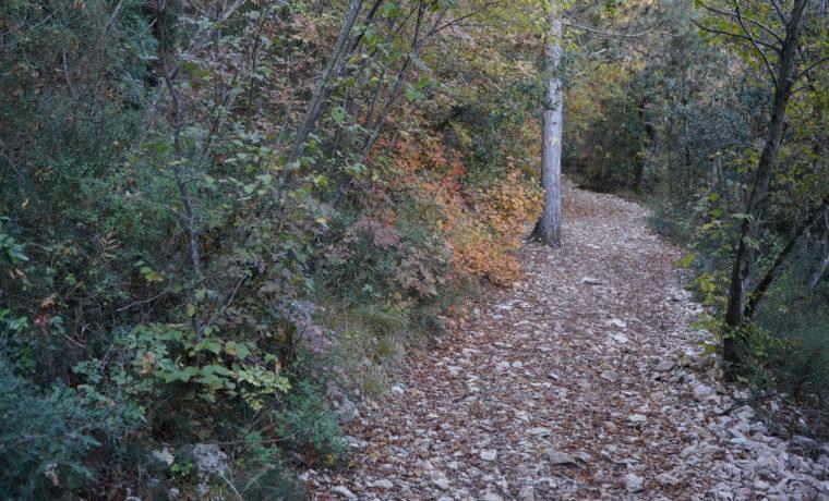 sentieri-francescani_b